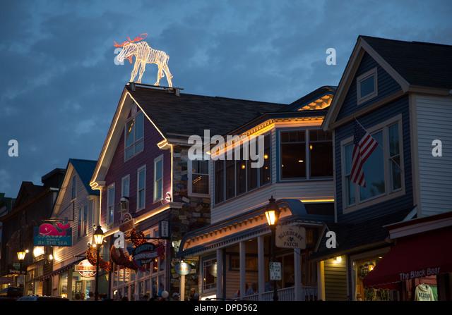 Moose Maine Stock Photos Amp Moose Maine Stock Images Alamy