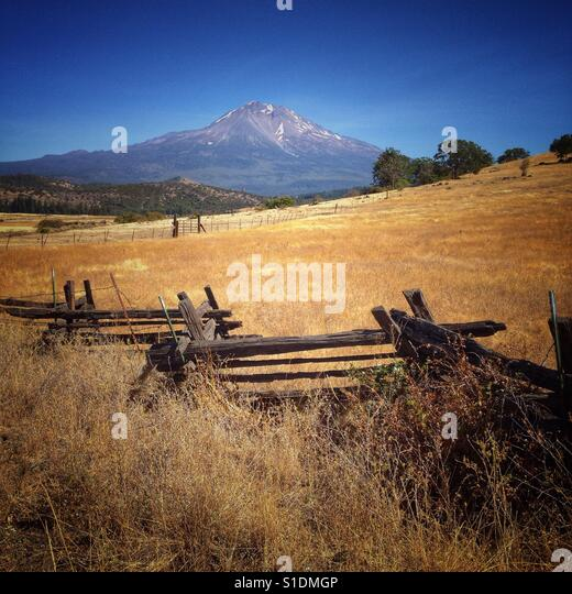 Mt Shasta back country - Stock Image