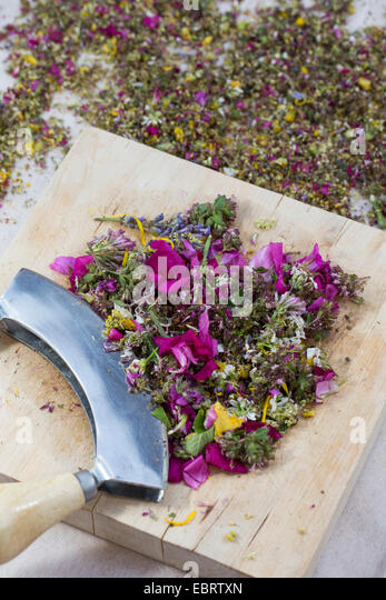 eatable petals are choped, Germany - Stock Image