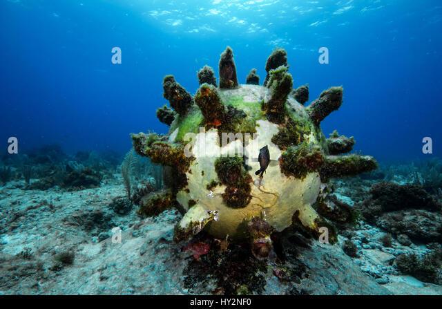 Tick-tock, the Time Bomb underwater sculpture in Mexico's Museo Subacuatico de Arte. - Stock Image