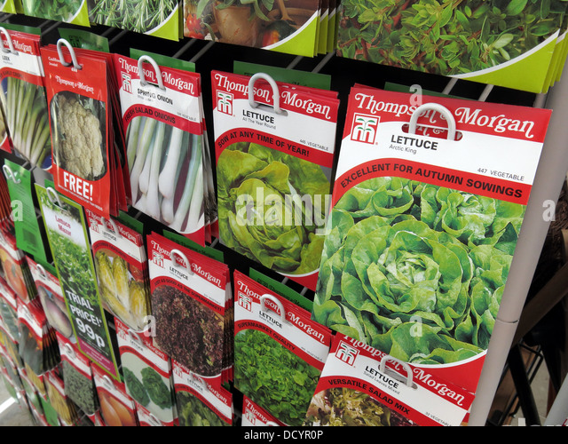 Thompson & Morgan Garden Allotment Seed packets in garden centre / supermarket, now popular again th Great Britain - Stock Image