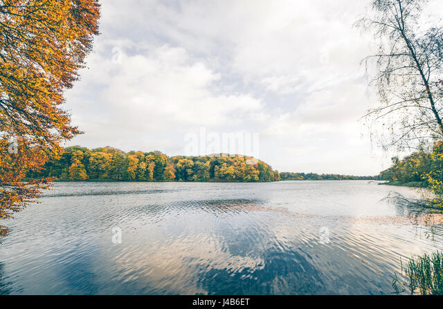 Lake scenery in the fall with trees in colorful autumn colors and a dark lake in cloudy weather in october - Stock Image