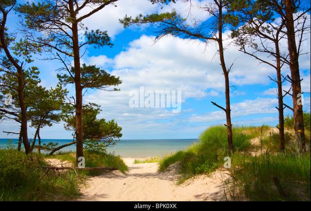 walkway to the sea - Stock Image