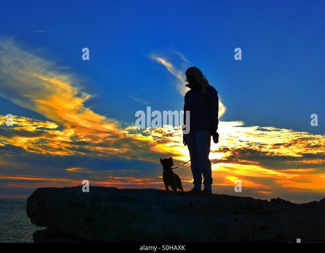 Sunset dog walks - Stock Image