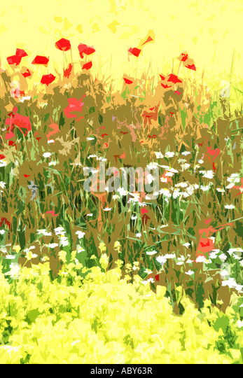 Wild flowers ,abstract design of poppies and assorted wild flowers . - Stock Image