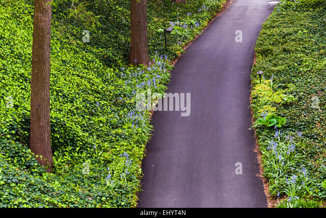 Paved Path In Garden Stock Photos Amp Paved Path In Garden
