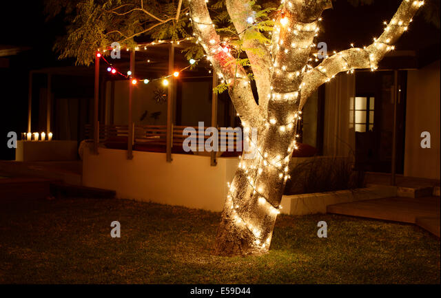 Tree lit up at night in backyard - Stock Image