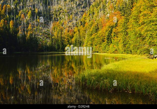 Rachelsee (Rachel Lake), Grosser Rachel, Bavarian Forest National Park, Bavarian Forest, Bavaria, Germany, Europe - Stock-Bilder