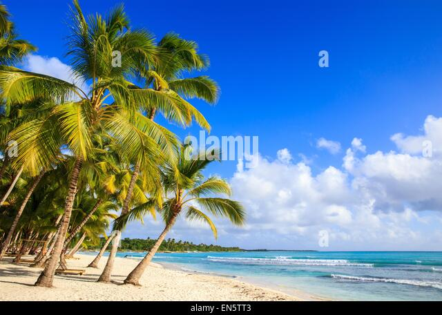 Beautiful caribbean beach on Saona island, Dominican Republic - Stock Image