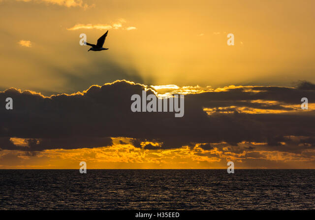 Sunrise near Punta Colorado, San Jose Island, Baja California Sur, Mexico - Stock Image