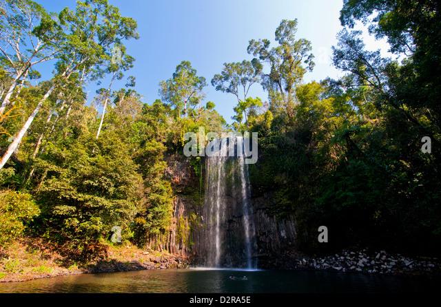 Millaa Millaa Falls, Atherton Tablelands, Queensland, Australia, Pacific - Stock Image