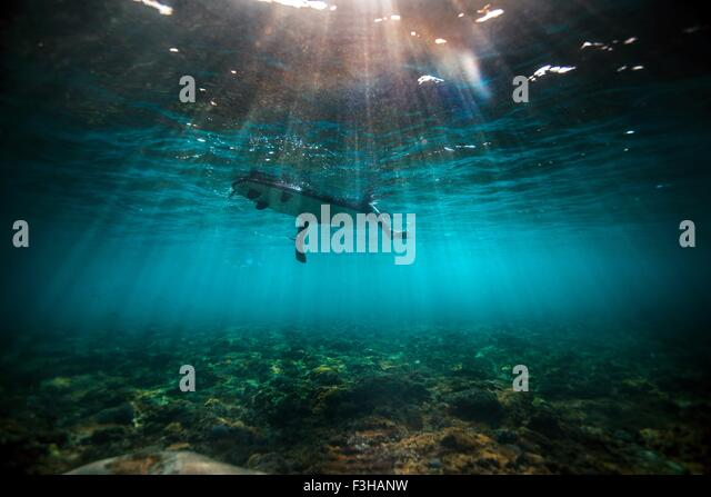 Underwater view of surfer waiting on a shallow reef for a wave in Bali, Indonesia - Stock Image