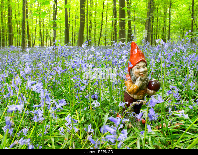 Garden gnome in the woods - Stock Image