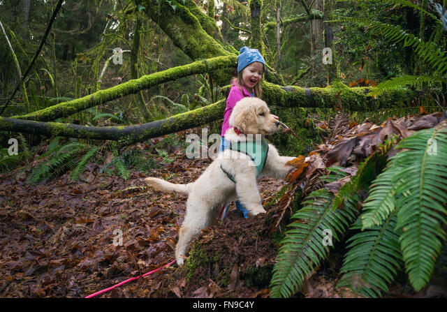 Young girl and golden retriever puppy dog digging in the forest - Stock Image