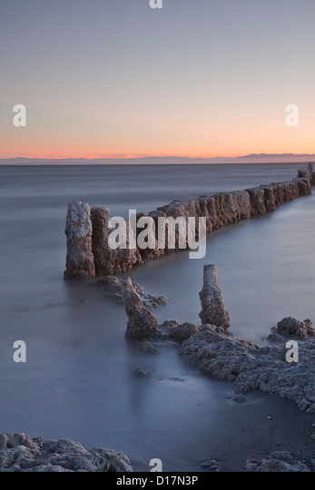 Salt-encrusted posts at Salton Sea, California, from Bombay Beach. - Stock Image