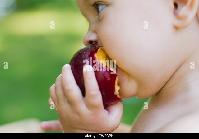 Baby girl eating plum, side view - Stock-Bilder