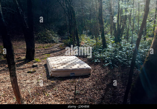 Abandoned Mattress in Forest - Pisgah National Forest, near Brevard, North Carolina, USA - Stock Image