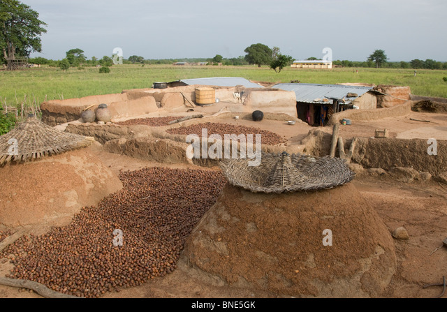 Rooftops of a Lobi compound used for food storage, Talawona, near Wechiau, Ghana. - Stock Image