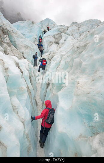 Mountaineers on glacier, Fox Glacier, South Island, New Zealand, Pacific - Stock Image
