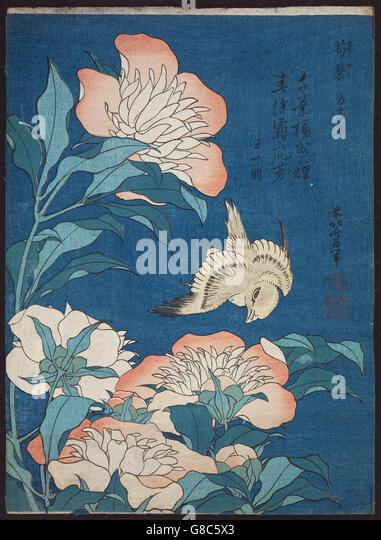 Katsushika Hokusai, published by Nishimuraya Yohachi (Eijudō) - Peonies and Canary - Stock Image