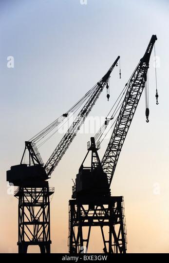 Cranes - Stock Image