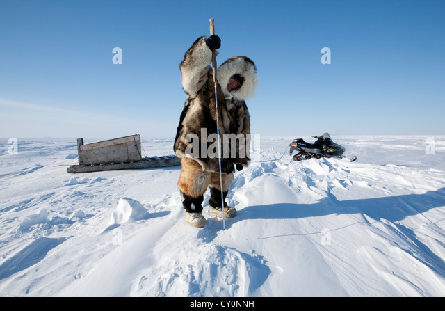 Inuit Hunting Stock Photos Amp Inuit Hunting Stock Images
