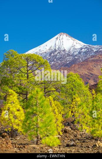 El Teide Mount, Tenerife, Canary Islands, Spain - Stock Image