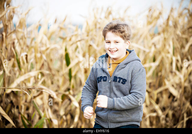 Boy standing in maize field - Stock Image
