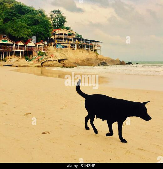 Taking a stroll down Haad Rin beach, Koh Phangan with Mellow Mountain in the background - Stock Image