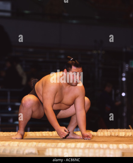 Midget sumo wrestlers