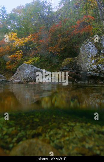 Split image of natural freshwater spring and autumn foliage Seoraksan national park Gangwon province South Korea - Stock Image