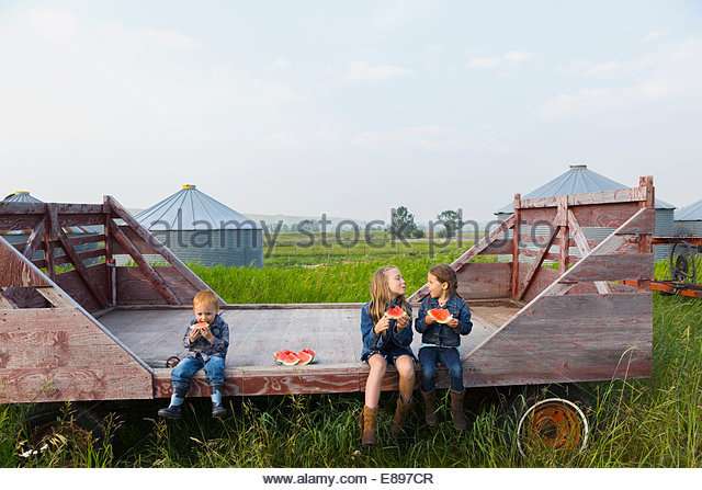 Girls and boy eating watermelon on farm - Stock Image