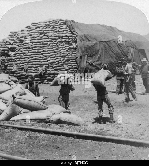 'Tons upon tons of oats for Tommy's faithful friend', De Aar, South Africa, Boer War, 1900. - Stock Image