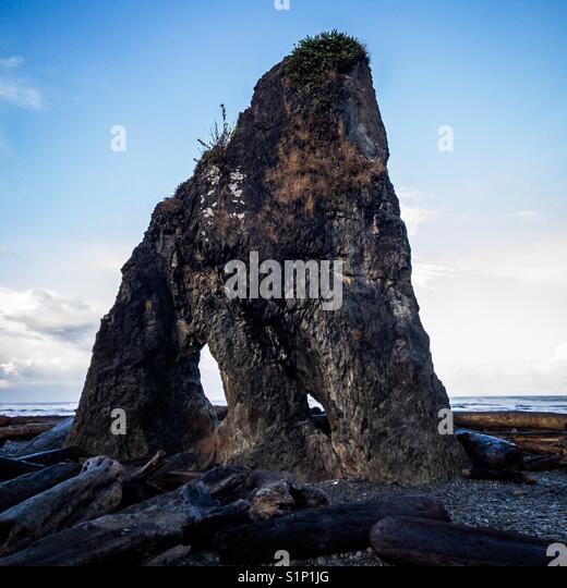 Sea stack on Ruby Beach - Stock Image