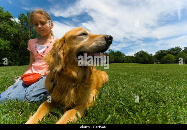 Young girl at park with pet Dog - Stock Image