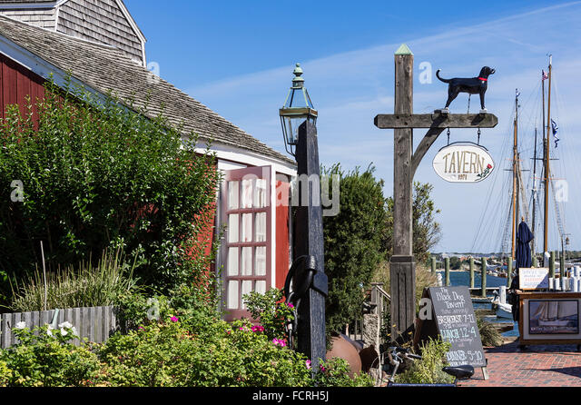 Black Dog Tavern Vineyard Haven