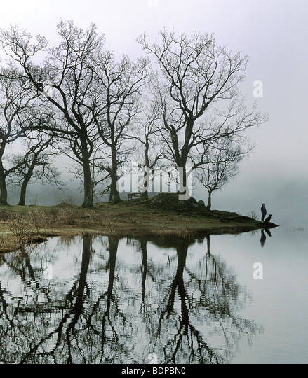A figure with a dog standing beside a lake with trees - Stock-Bilder
