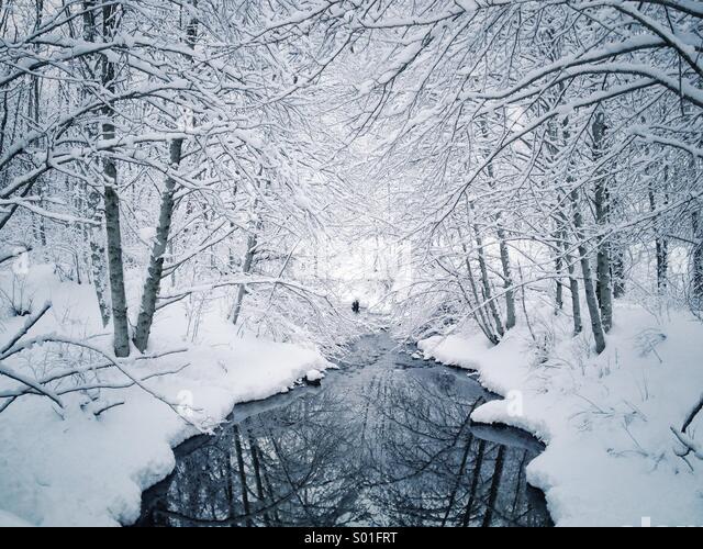 Snow covered trees along creek in winter wonderland landscape. - Stock Image