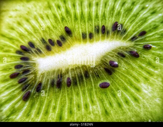 Close up macro photograph of the green centre of a fresh kiwi fruit. - Stock-Bilder