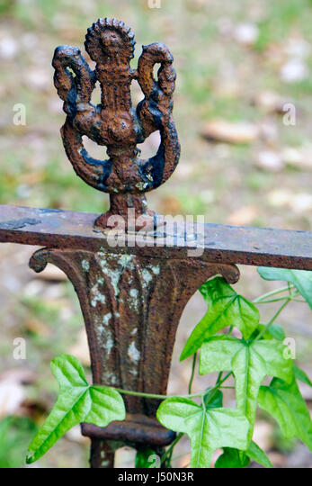 Selma Alabama Historic District Old Live Oak Cemetery wrought iron railing detail - Stock Image