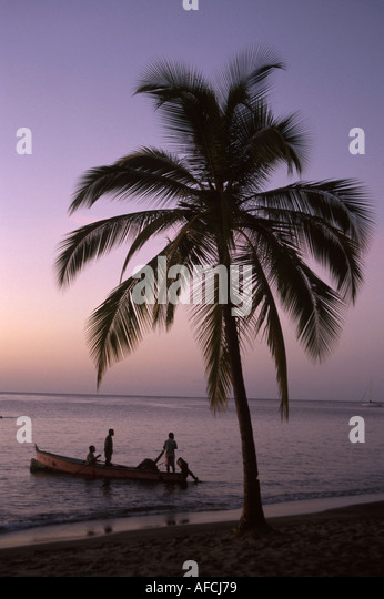 West Indies St. Lucia Anse Chastanet Resort Caribbean Sea sunset palm tree dusk fishermen boat - Stock Image