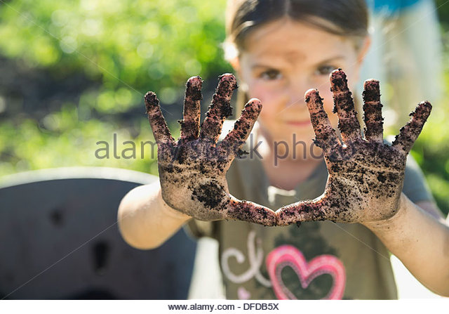Little girl showing hands full of garden dirt - Stock Image