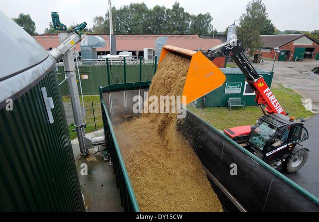 biogas cow - photo #37