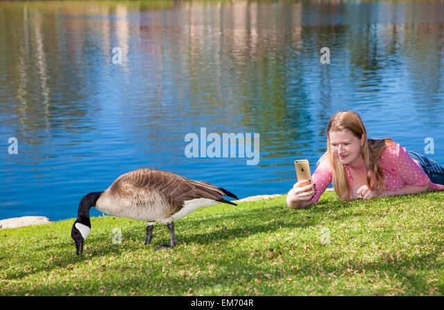 Teenage girl using iPhone mobile phone device outdoors  MR  © Myrleen Pearson - Stock-Bilder