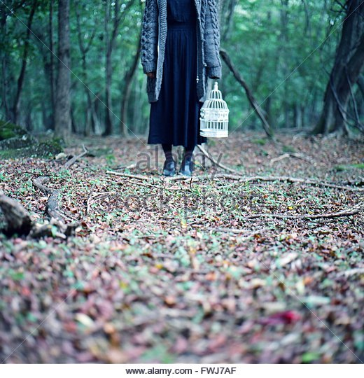 Low Section Of Woman Standing In The Forest - Stock Image