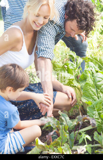 Family gardening together - Stock Image