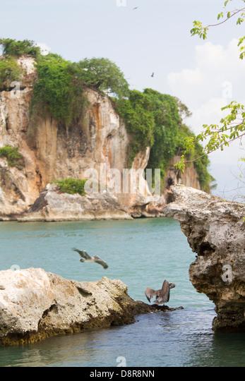 Los Haitises National Park, Samana, Dominican Republic. - Stock Image