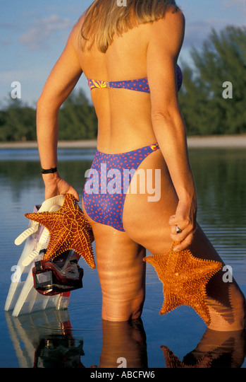 Tropics tropical woman snorkeler holding two starfish iconic caribbean vacation symbol - Stock Image
