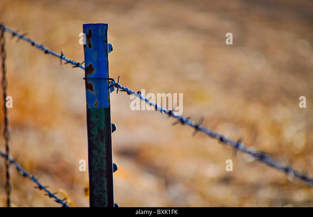 barbed wire fence post - Stock Image