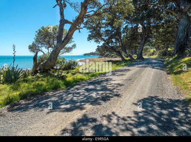Gravel road, Colville Road, East coast, Coromandel, New Zealand - Stock Image